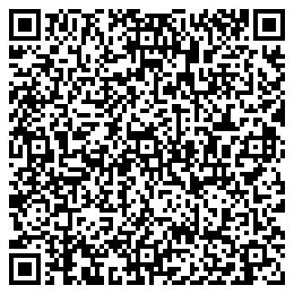 QR-код с контактной информацией организации Альтаир, ИП