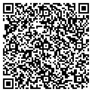 QR-код с контактной информацией организации ICE CREAM