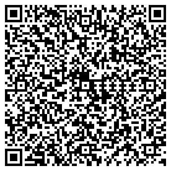 QR-код с контактной информацией организации Дизель Лайн, ЧП