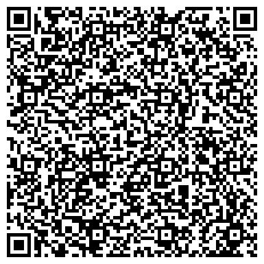 QR-код с контактной информацией организации Алеко-Сервис (Демьяненко), ЧП