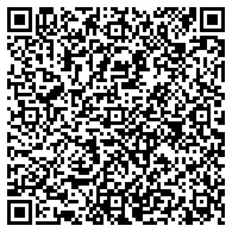 QR-код с контактной информацией организации NETORMOZI