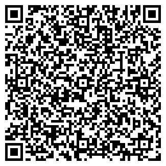 QR-код с контактной информацией организации Шапутько, ИП