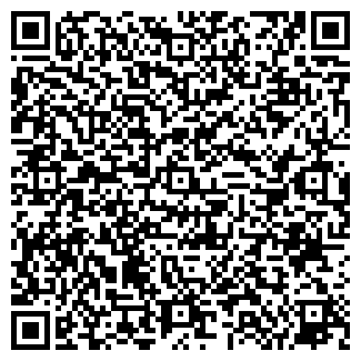 QR-код с контактной информацией организации Hondastore