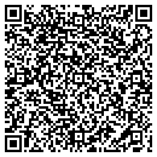 QR-код с контактной информацией организации Bumperochek, ЧП