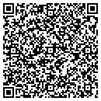 QR-код с контактной информацией организации Опель, ЧП