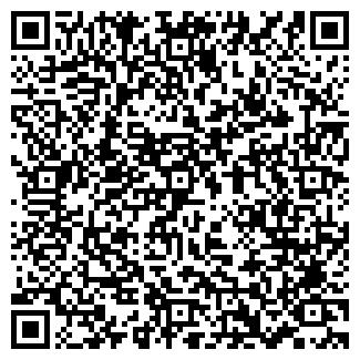 QR-код с контактной информацией организации Ланченко, ЧП