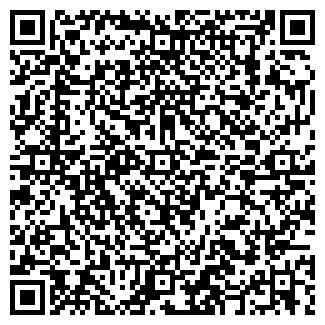 QR-код с контактной информацией организации Нецвит, СПД