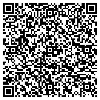 QR-код с контактной информацией организации Дизель Лайн