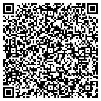 QR-код с контактной информацией организации ИП Ситдиков Т. Р.