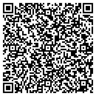 QR-код с контактной информацией организации Долина, ЧП