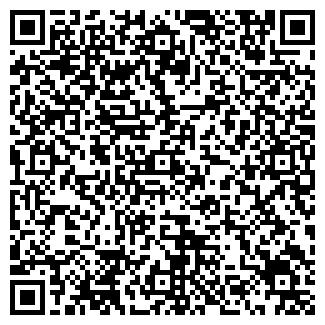 QR-код с контактной информацией организации Дубль В, ООО