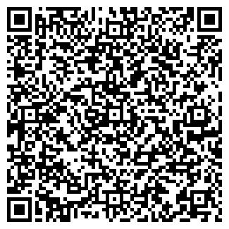 QR-код с контактной информацией организации Шабельников, ИП