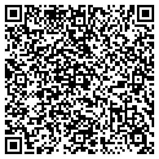 """QR-код с контактной информацией организации """"StarTrek"""""""