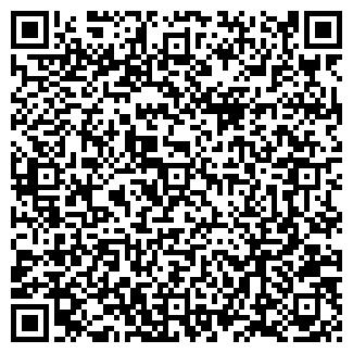 QR-код с контактной информацией организации ВИКА, ТОО