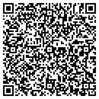 QR-код с контактной информацией организации isuzukiev03