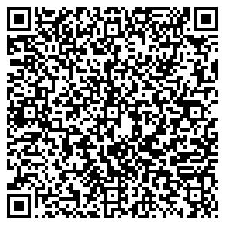 QR-код с контактной информацией организации Vivacar