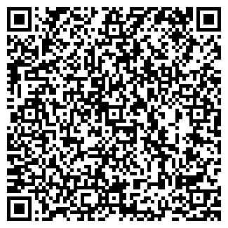 """QR-код с контактной информацией организации ТОО """"DataSystems"""""""