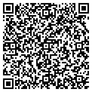 QR-код с контактной информацией организации Ходин П.В., ЧП
