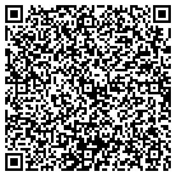 QR-код с контактной информацией организации ВМ Груп (VМ Groop), ЧП