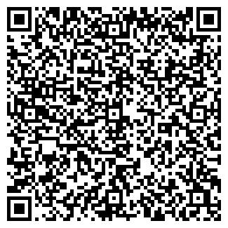QR-код с контактной информацией организации Pro100CTO, ООО