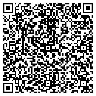 QR-код с контактной информацией организации Vipfresh, ЧП