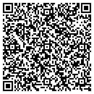 QR-код с контактной информацией организации ИП Шолпан