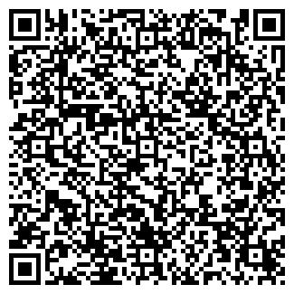 QR-код с контактной информацией организации Палютин, ИП