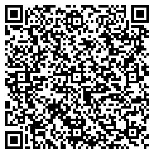 QR-код с контактной информацией организации CarScan (Карсан), ИП
