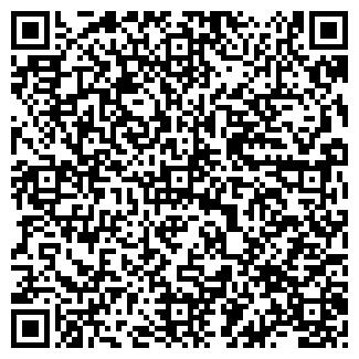 QR-код с контактной информацией организации ТЦ «Кар-Сити»