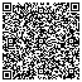 QR-код с контактной информацией организации Ibasta, ЧП