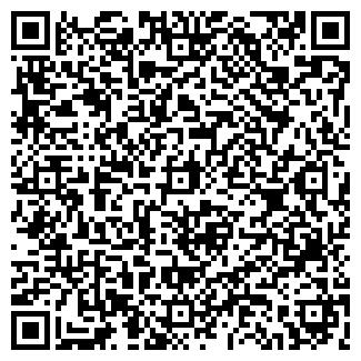 QR-код с контактной информацией организации Шины , ЧП