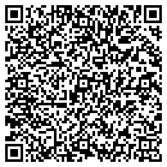 QR-код с контактной информацией организации Шиновик, ООО