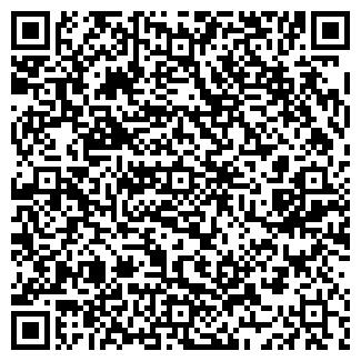 QR-код с контактной информацией организации Поиграйка, ЧП