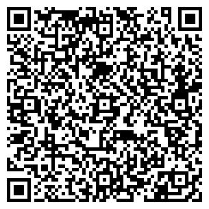QR-код с контактной информацией организации Шин-Трэйд, ТОО