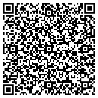 QR-код с контактной информацией организации Фирма Alive, ТОО