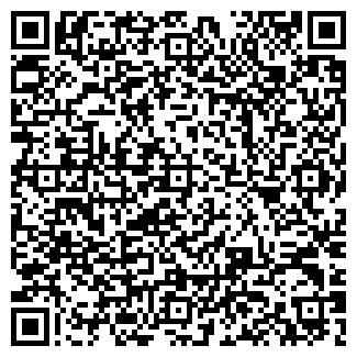 QR-код с контактной информацией организации autoelekt