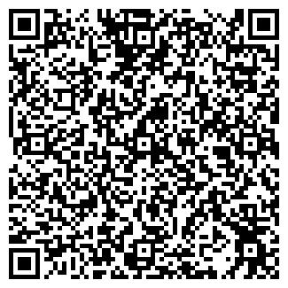 QR-код с контактной информацией организации Субъект предпринимательской деятельности VizTel