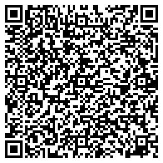 QR-код с контактной информацией организации Svetod, ЧП