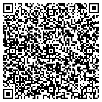 QR-код с контактной информацией организации Ваши Шины, ЧП