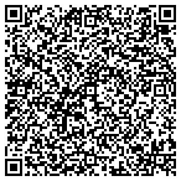 QR-код с контактной информацией организации DSV group (ДСВ групп), ИП