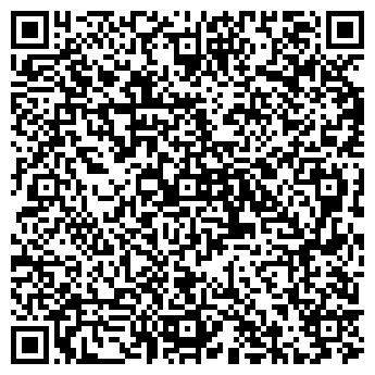 QR-код с контактной информацией организации VipCar (ВипКар), ИП