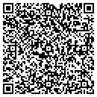 QR-код с контактной информацией организации чп каштан