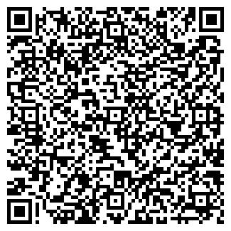 QR-код с контактной информацией организации ДНС ГРУПП
