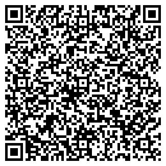 QR-код с контактной информацией организации Пугачев, ИП
