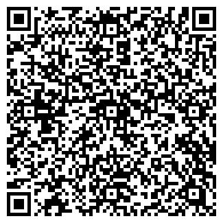 QR-код с контактной информацией организации Рина, ИП