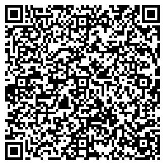 QR-код с контактной информацией организации Субъект предпринимательской деятельности SHLIFMASH