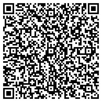 QR-код с контактной информацией организации ИП РАМАЗАН