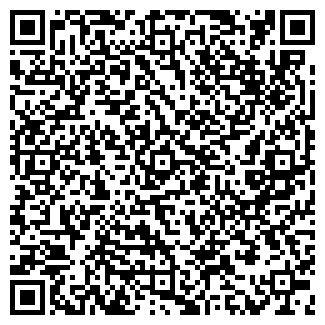 """QR-код с контактной информацией организации ООО """"Джемакс"""""""