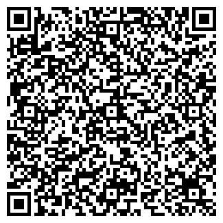 QR-код с контактной информацией организации Озонатор, СПД