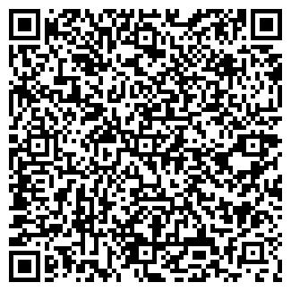 QR-код с контактной информацией организации Печник, Компания